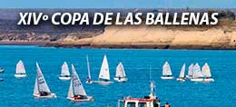 COPA DE LAS BALLENAS