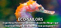 ECO-SAILORS