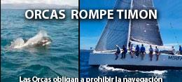 ORCAS ROMPE TIMON